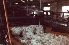 Wool Scouring Process